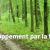 Image de chemin dans la forêt symbolisant le développement par la formationle